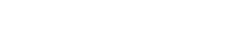 2019 Regional Summit logo-white.png